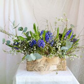 [서울 수도권배송]Spring & sweet 꽃나무들 옆에 꽃배달하시려면 이미지를 클릭해주세요