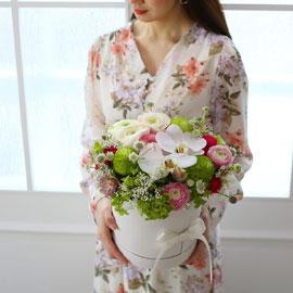 [서울 수도권배송]Spring & sweet  꽃망울이 부푼다 꽃배달하시려면 이미지를 클릭해주세요