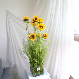 Entrance Flower - Hae Ba Ra Gi 꽃배달하시려면 이미지를 클릭해주세요