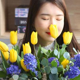 [서울,수도권배송] spring & sweet  튤립이랑 히야신스랑 꽃배달하시려면 이미지를 클릭해주세요