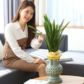 은은한 향기가 좋은 보세 꽃배달하시려면 이미지를 클릭해주세요