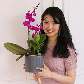 부모님 은혜 감사합니다 - 사랑의 핑크 만천홍 꽃배달하시려면 이미지를 클릭해주세요