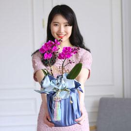 정성이 느껴지는 보자기 포장 - 만천홍 꽃배달하시려면 이미지를 클릭해주세요