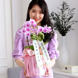 정성이 느껴지는 보자기 포장 - 핑크레이디 꽃배달하시려면 이미지를 클릭해주세요