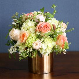 Roseday - Tessa 꽃배달하시려면 이미지를 클릭해주세요