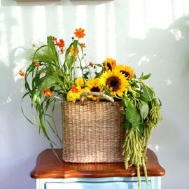 Celebrate Fall - 이 아름다운 가을 꽃배달하시려면 이미지를 클릭해주세요
