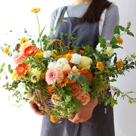 Celebrate Fall - 가을 색연필 꽃배달하시려면 이미지를 클릭해주세요