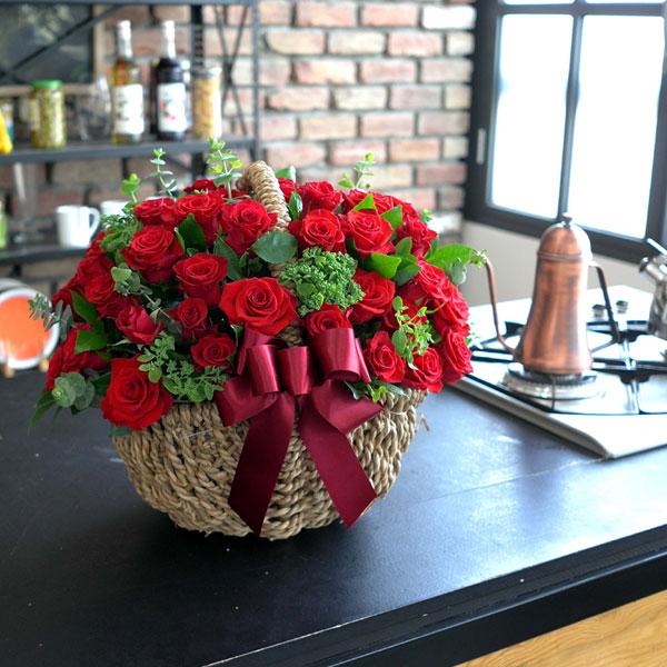 매혹적인 빨간 장미그녀에게 사랑을 고백하세요
