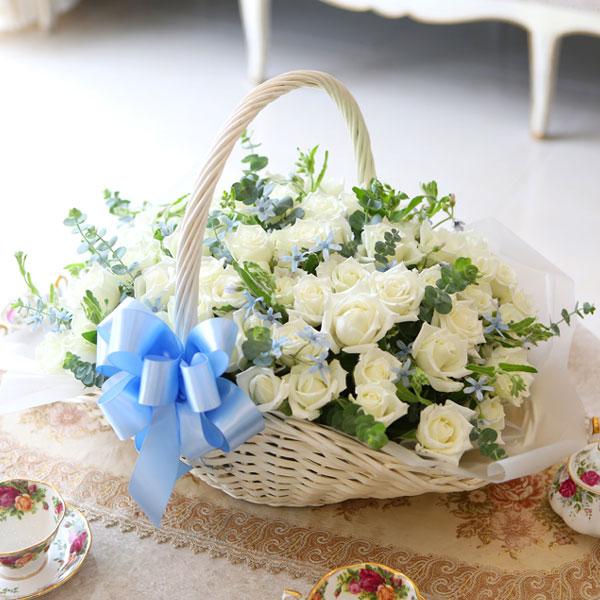 순수한 고백순결이란 꽃말을 지닌 화이트 장미
