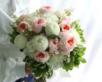 그대 이름은 장미장미의 계절, 장미꽃이 가지는 아름다운 꽃말들과 함께