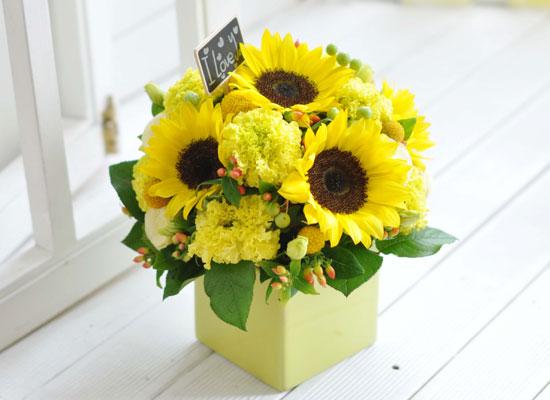 [서울배송]Lovely lover - Sunshine girl