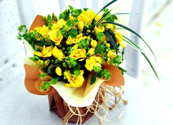상큼한 겨울 꽃 - Delicious yellow