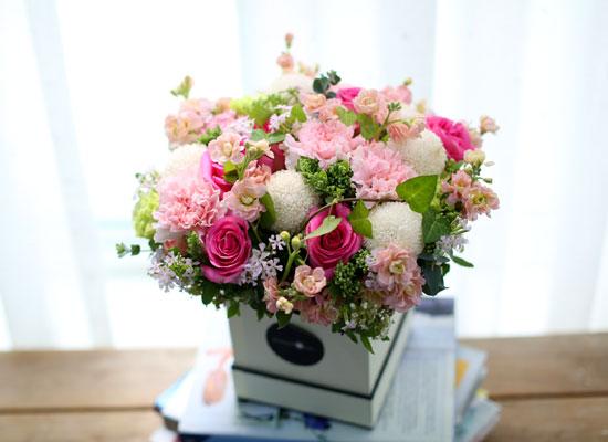 Spring loves 사랑하는 마음 (**지방은 다른 박스나 화기로 대체됨))