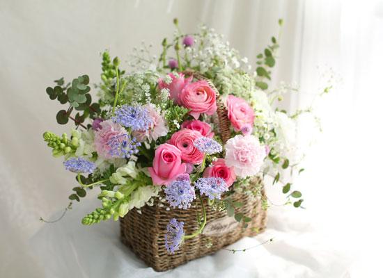봄 꽃바구니 - 찬란한 봄빛
