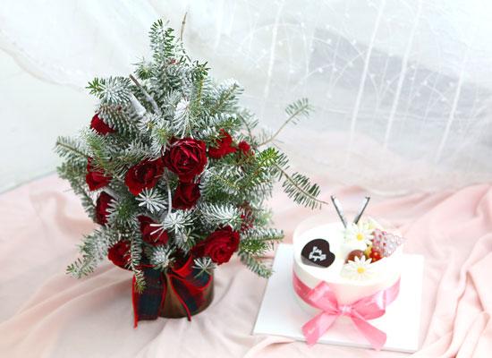 크리스마스케익과 함께(즐거운 시간)