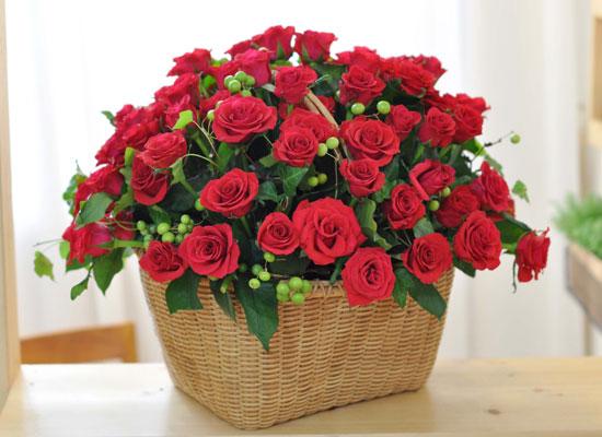 [서울배송] [100]The Roses Bloom - 사랑을 그대 품안에