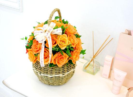 장미의 맹세 - orange blusher