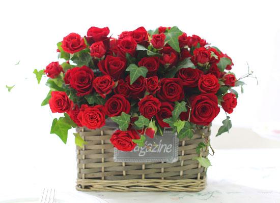 Rose Day - 석양 빛 바다