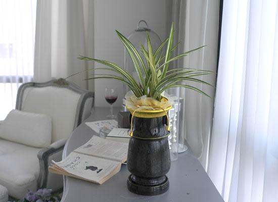 시선을 머물게 하는 실내 식물 - 고급스러운 분위기에 동양란(사항수)