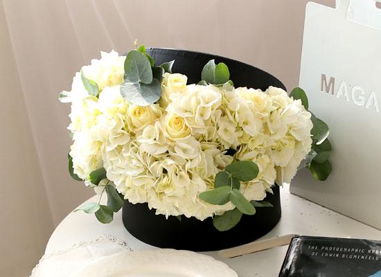 Fresh spring flower English white
