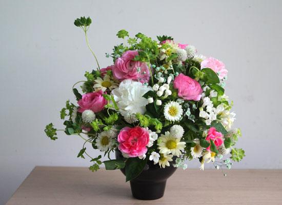 봄,꽃들의 축제  Filled with spring